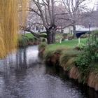 Ellel Aotearoa/New Zealand Thumbnail